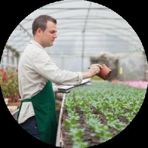 javier cultivo vivero
